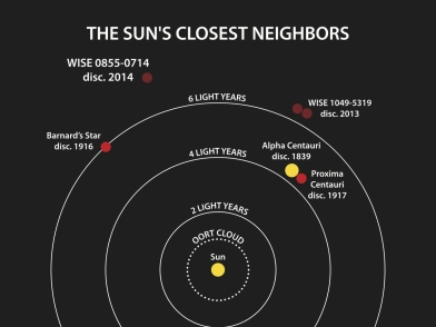 Our Sun's closest neighbors.  Three brown dwarfs (including two in orbit around each other) have only just been discovered (with WISE).  Credit: Penn State University.