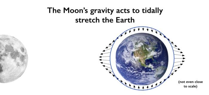 Tides_Earth_Moon.jpg